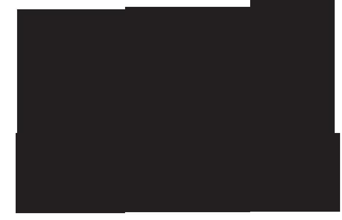 MS MARIANNE logo